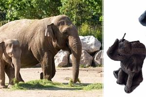 Svíčka slon z kvalitního vosku...