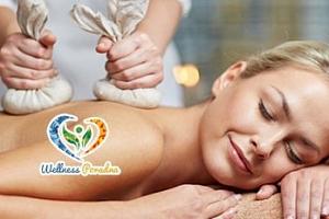 Hodinová masáž celého těla dle výběru...