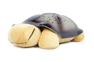 Svítící želva...