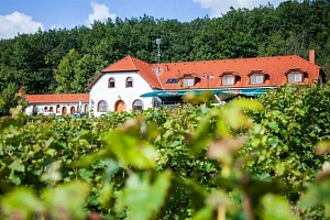 3–5denní vinařský pobyt pro 2  u Třebíče s polopenzí...