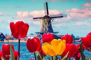 3denní zájezd do Keukenhofu a Amsterdamu...