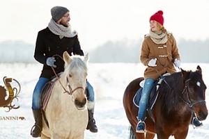 Jízda na koni, teorie péče a manipulace s koňmi...