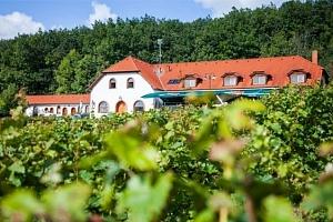 3 až 5denní vinařský pobyt pro 2 u Třebíče s polopenzí...