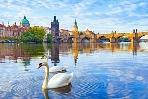 Praha s polopenzí 20 minut od centra...