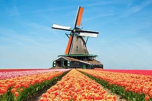 Květinový park Keukenhof s návštěvou Amsterdamu pro dva...
