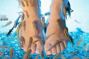 Pedikúra s rybkami Garra Rufa...