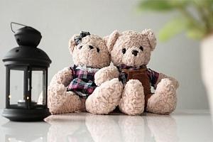 Plyšoví medvídci pro děti i dospělé...