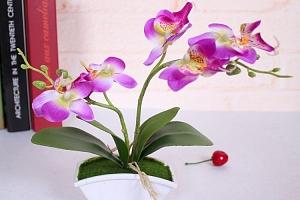 Umělá motýlí orchidej v květináči - 4 barvy a poštovné ZDARMA!...