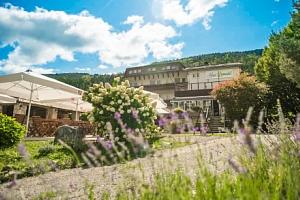 Rakousko: Hotel Haus Lavendel u jezera se soukromou pláží a polopenzí...