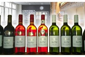 Poukaz v hodnotě 200 Kč na nákup kvalitního LAHVOVÉHO vína...