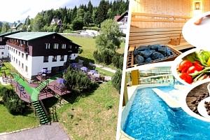 Relaxační wellness pobyt v 3*Hotelu Venuše se vstupenkami do Vodního ráje Bedřichov....