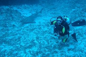 UDI Open Water Diver - základní potápěčský kurz pro začátečníky - splňte si svůj sen a staňte se…...