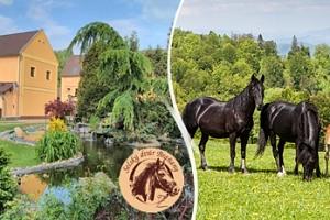 Krušné hory, 3 dny pro dva na 3* statku + polopenze, jízda na koni...