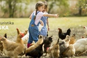 Farmářem na zkoušku pro 1 os. či rodinu s možností přespání...