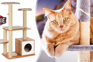 Škrabadlo Trixie Laia wooden pro kočky...