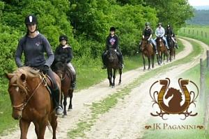 Jízda na koni, teorie péče a manipulace s koňmi - Praha a okolí