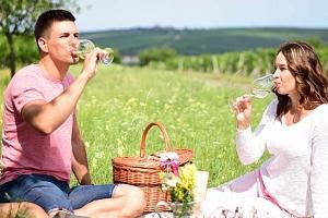 3denní pobyt se snídani a láhví vína pro 2 v penzionu Jako ze škatulky v Bořeticích...