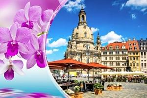 Výlet do Drážďan: jarní veletrh, výstava orchidejí, prohlídka města...