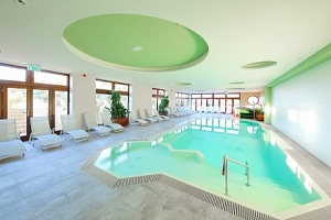 Wellness pobyt s polopenzí blízko Budapešti v Nádas Tó Park Hotelu ***superior...