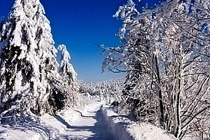 Zimní pobyt pro 1 osobu s polopenzí v penzionu Pastviny. Využití přes vánoce....