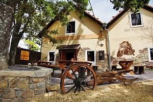 Jižní Morava v klidném penzionu u Znojma s privátním vstupem do sauny, vínem a polopenzí...