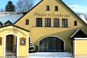 Pobyt pro dva v Penzionu a restauraci U Černého čápa, moravské víno, snídaně a hodina ve vířivce....