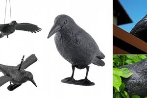 Maketa havrana plastová vrána na plašéní špačků, holubů a další ptáky , havran...