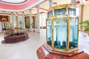 Františkovy Lázně v Penzionu Hortenzie se vstupem do Aquafora a polopenzí...