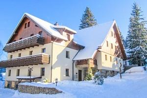 Šumava v Penzionu Alpský Dům s polopenzí jen 250 m od ski areálu + dítě zdarma...