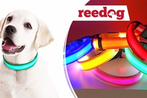 Nabíjecí svíticí obojek Reedog v různých barvách a velikostech...