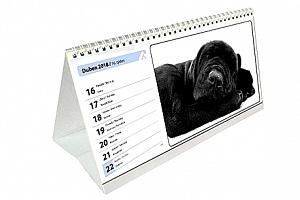 Originální kalendář z Vašich fotografií. Stolní, nástěnný? Čtrnáctidenní nebo roční?...