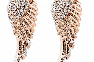 Náušnice Andělská křídla v bronzovém provedení z chirurgické oceli a zirkony SE000050...