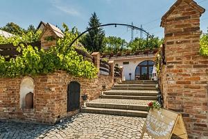 Neomezená konzumace vína v rodinném Vinařství Krýsa na jižní Moravě...