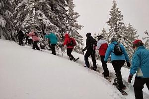 Sněžnicový kurz v horském terénu...