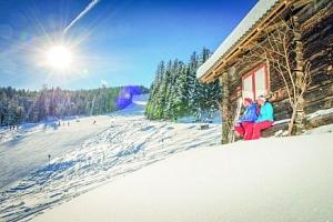 Rakousko: Pension Bachseitenhof se saunou, polopenzí a jen 500 m od ski areálu...