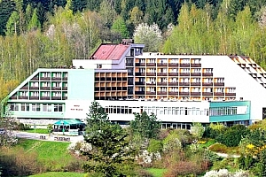 4denní wellness pobyt pro jednoho v hotelu Petr Bezruč***, s polopenzí, bazénem, infrasaunou, aj....
