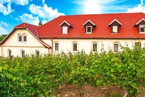 Znojmo v Hotelu Schaller s polopenzí, prohlídkou kláštera a ochutnávkou vína...