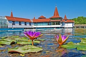 Maďarsko: jezero Hévíz v penzionu s neomezeným vstupem do wellness a fitness + snídaně...