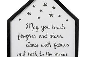Obrázek v rámu Fireflies...