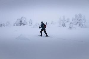 Horská túra na sněžnicích...