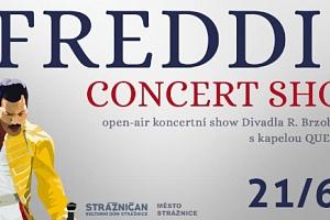 Lístek na open air koncertní show FREDDIE - CONCERT SHOW ve Strážnici 21.6.2019...