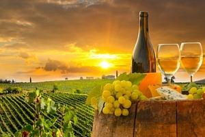 Znojmo: vinařský pobyt v Hotelu Bax *** s polopenzí a slevou do termálů...