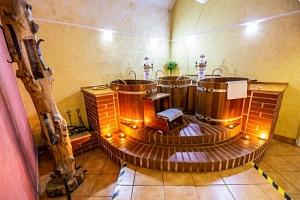 Jižní Čechy: LH Hotel Dvořák Tábor **** s wellness či pivní koupelí + polopenze...