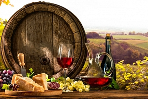 """Penzion """"V Zahraničí"""" na Jižní Moravě s neomezenou konzumací vína..."""