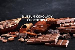 Vstup do Muzea čokolády Chocotopia s ochutnávkou...