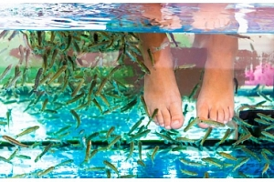 Relax s rybičkami Garra Rufa v Thajském ráji...