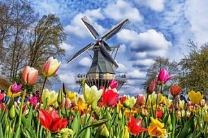 Výlet do největšího květinového parku Keukenhof a Amsterdamu...