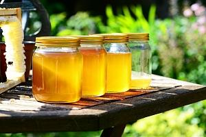 Včelařem na zkoušku na včelí farmě pro dva...