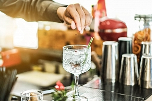 Řízená degustace ginu a párování Gin a Tonic v Praze...