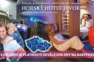 Extra bonusy pro DVA! Pobyt na 3 dny s polopenzí a wellness v oceněném ***Hotelu Javor. Zasloužený…...
